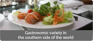 Gastronomic variety in the southern side of the world