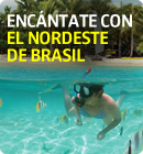 ENC&Aacute;NTATE CON EL NORDESTE DE BRASIL